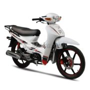 DY125 RS_white